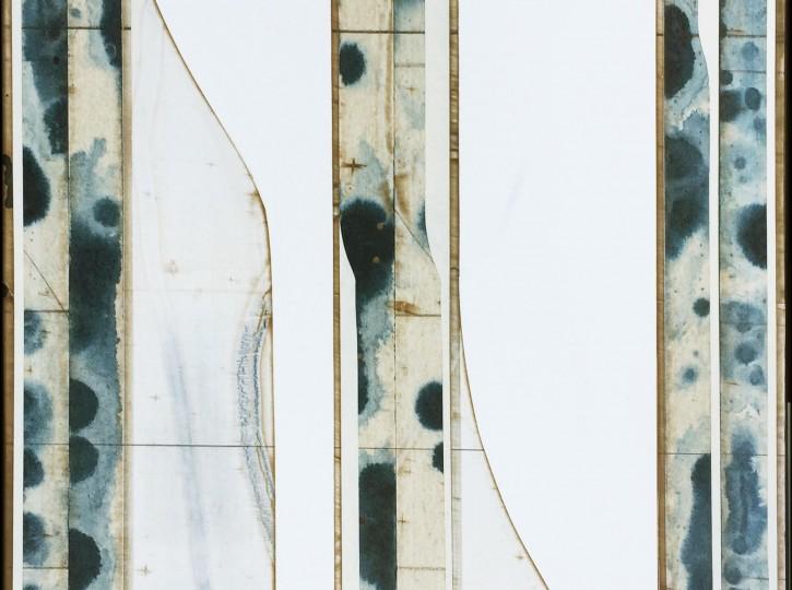 Aspenblur (4) 48x30